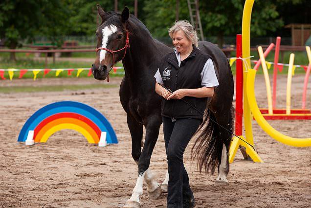 1 HorseAgility FHA Header