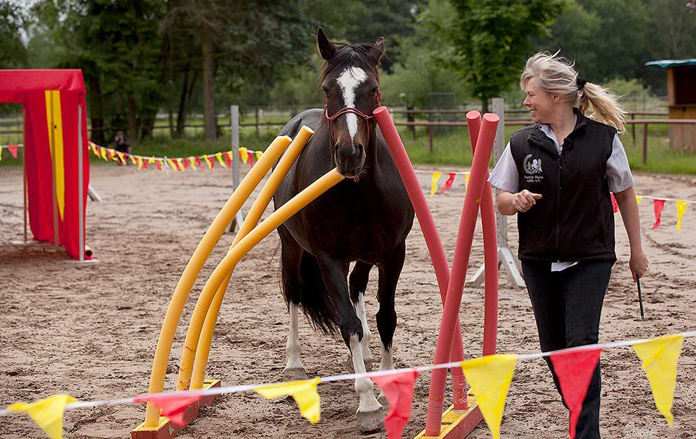 2 HorseAgility FHA Header