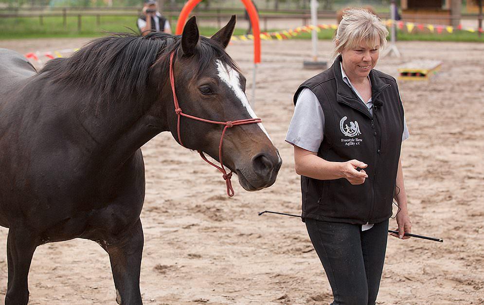 3 HorseAgility FHA Header