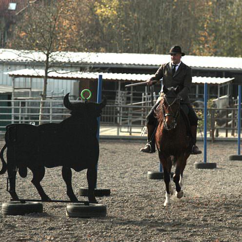 Der Klassiker unter den Hindernissen der Working Equitation - Ringstechen!