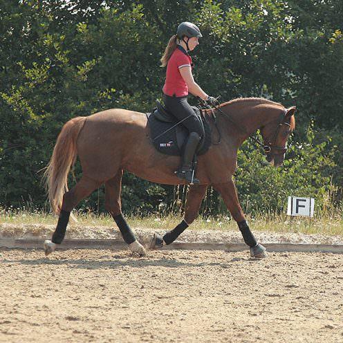 Durch diese Reitübung wird die Durchlässigkeit des Pferdes trainiert und somit eine feinere Hilfengebung ermöglicht.