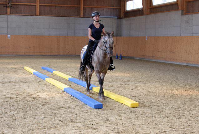 Die Langgasse ist eine Übung der gerittenen Dual-Aktivierung nach Michael Geitner.