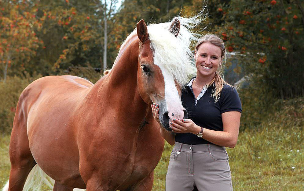 Franziska Keth und ihr Pferd Amani sind auf Facebook, wie in der Presse bekannt: Der Haflinger ist ein Ausnahmetalent, der bis zur schweren Klasse erfolgreich in der Dressur ist. Wir haben die beiden besucht und erfahren, wie sie so weit gekommen sind.