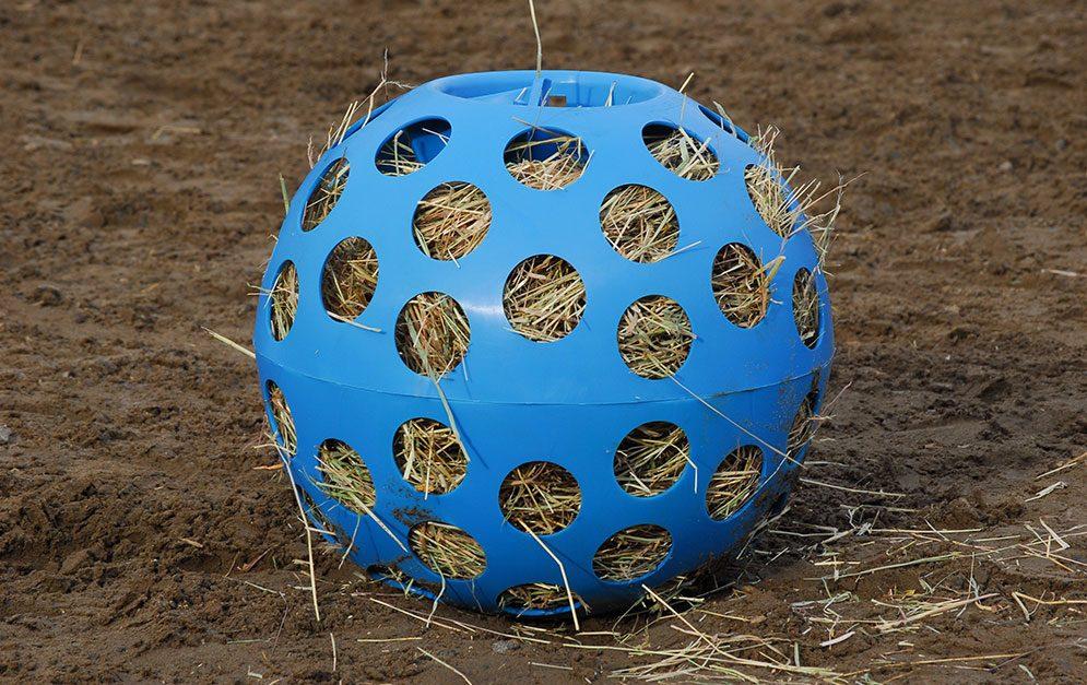 Der Pferde-Futterball ist für all diejenigen, die ihrem Pferd eine artgerechtere Futteraufnahme mit spielerischer Beschäftigung ermöglichen möchten.