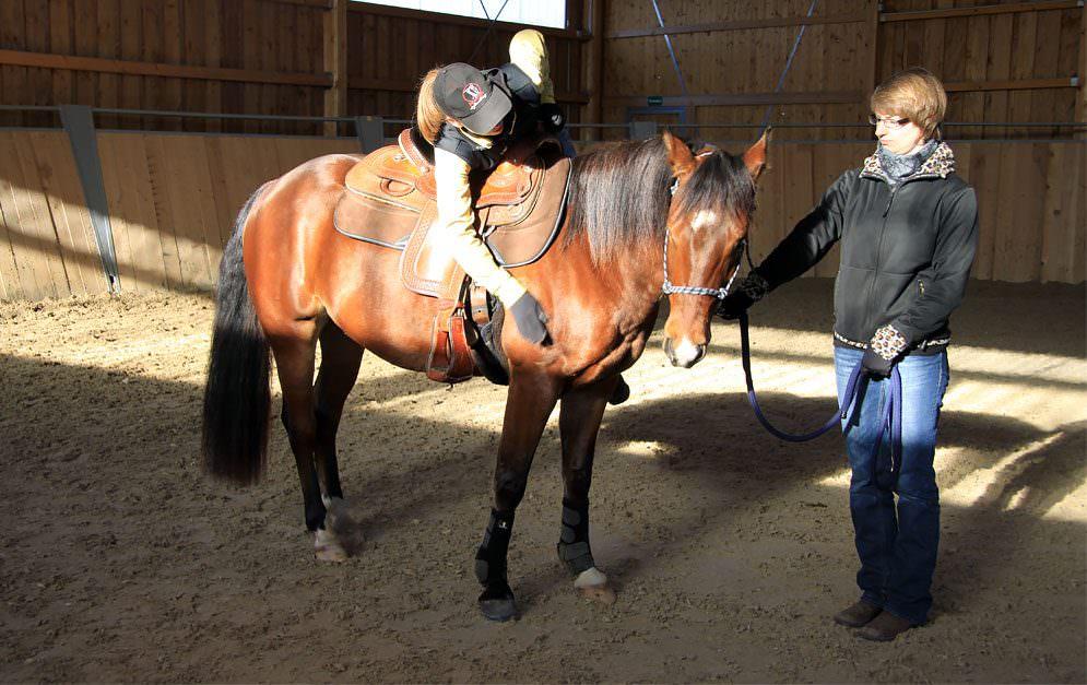 Jungpferdeausbildung Western mit Stefanie Kuhn - Gewöhnung an das Pad, den Sattel und das Reitergewicht.