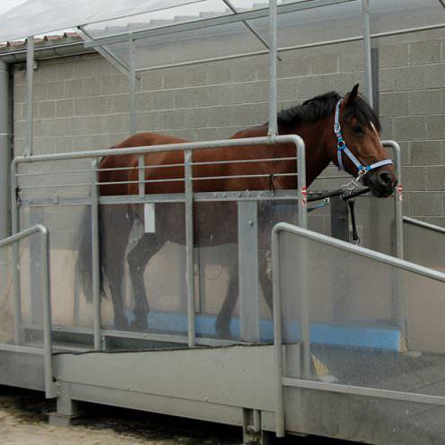 Laufbänder und Aquatrainer fürs Pferd