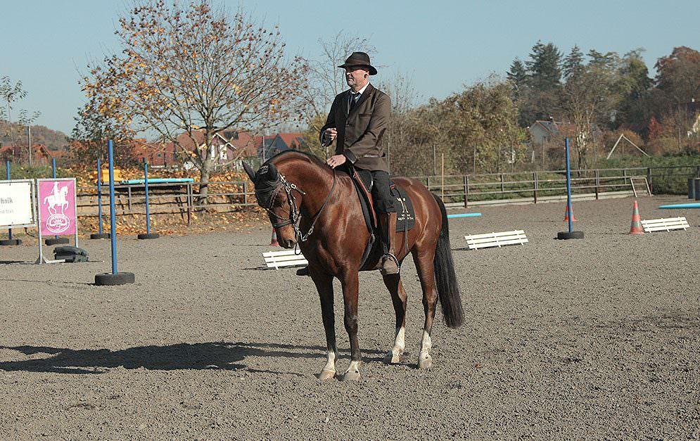 Der Komfort beim Reiten steigt mit der Ausbildung des Pferdes. Hier ist aber nicht nur das Pferd in Bewegung, sondern auch der Weg zum Halten wichtig.