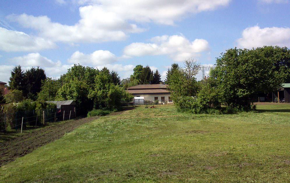 Die bisher größte Herausforderung im Zusammenhang mit dem Bau des Paddock Trails bestand nun darin, das Wegenetz Gras-frei zu bekommen.