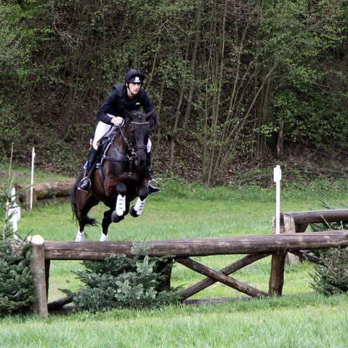 Ausbildung zum Vielseitigkeitspferd