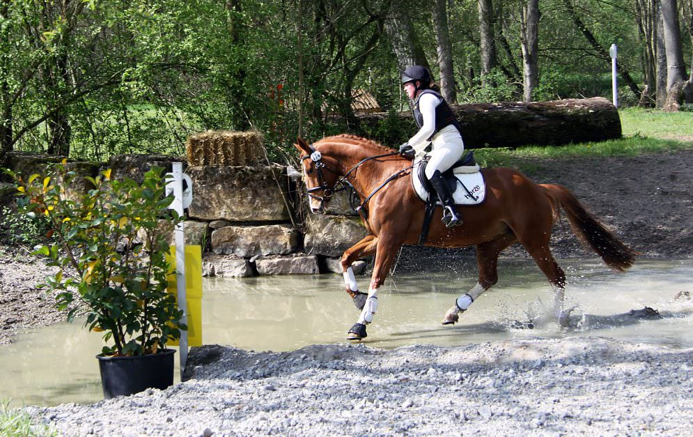 Ausbildung zum Vielseitigkeitspferd - Geländeprüfung