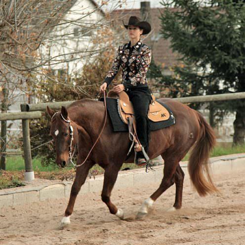 Westerndisziplin Western Horsemanship