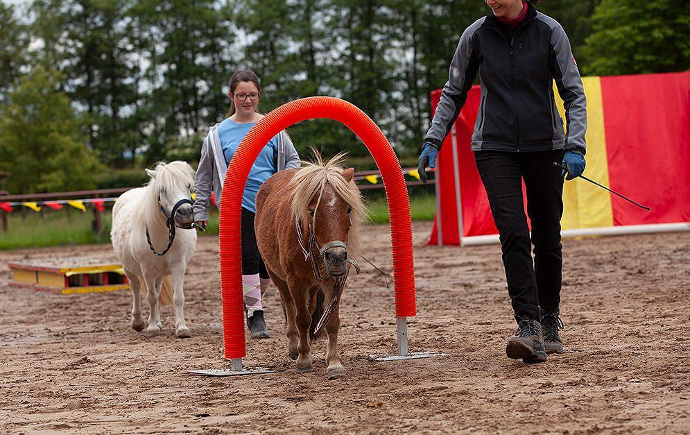 HorseAgility Torbogen Header