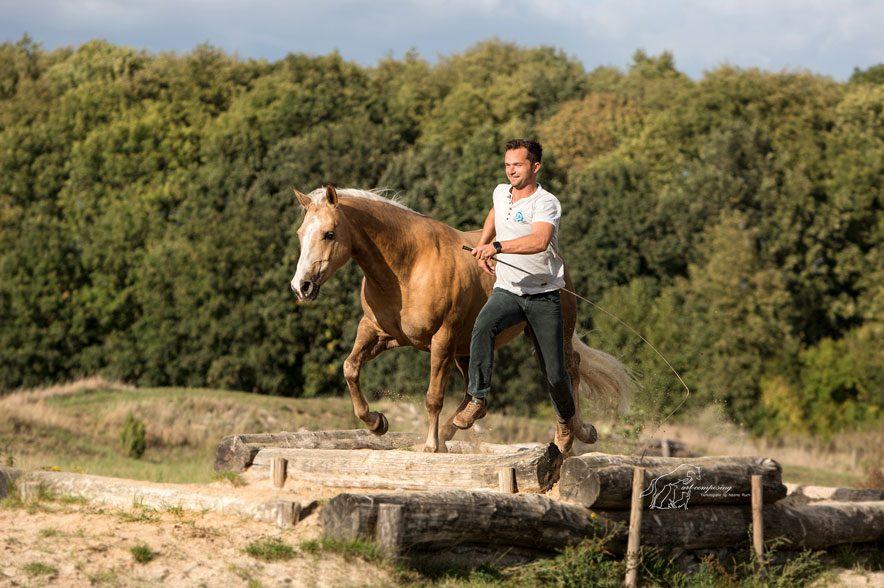 Next Generation: Um noch mehr Zeit für die Pferden zu haben, folgte Sebastian seinem Herzen und ging 2013 aus einer leitenden kaufmännischen Tätigkeit in die Selbstständigkeit.