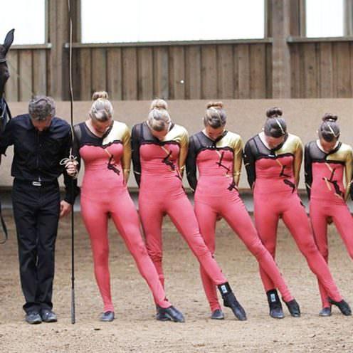 In unserem Beitrag geht es um den ersten Pflichtblock der Ausbildungsklasse S. Außerdem bekommst du viele zusätzliche Infos zum Turnierstart in dieser Pferdesportdisziplin.