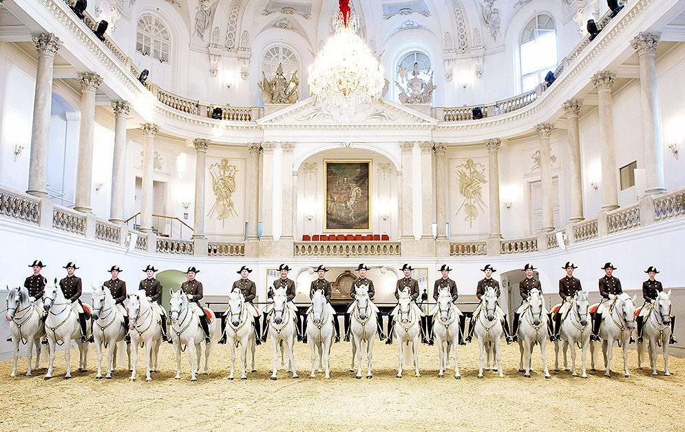 Die Spanische Hofreitschule in Wien ist eine bekannte, etablierte Institution in Österreich sowie der gesamten Reiterwelt.