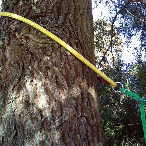 Mit Gartenschlauchresten Bäume schützen - das geht!