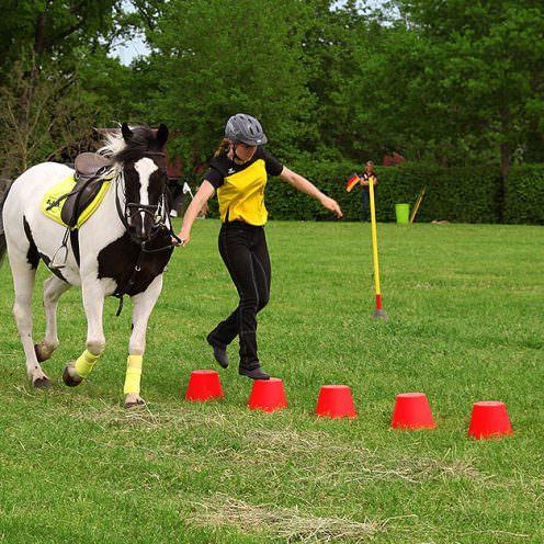 Mounted Games sind Reiterspiele aus Großbritannien.