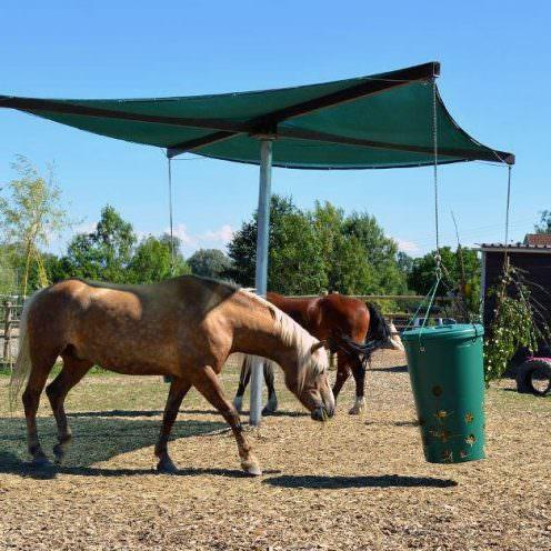 Die Innovation auf dem Paddock Trail: Der HEU-TO-GO kombiniert das Fress- und Laufverhalten der Pferde in Anlehnung an das Leben ihrer Urahnen.