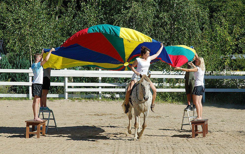 Irgendwie tendieren immer mehr Reiter dazu, wahllos auf dem Platz herum zu reiten. Vor allem wenn's schnell gehen muss verliert sich der Sinn der Übungen.