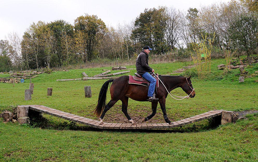 Der Extreme Trail als natürlicher Hindernisparcours für Pferde.