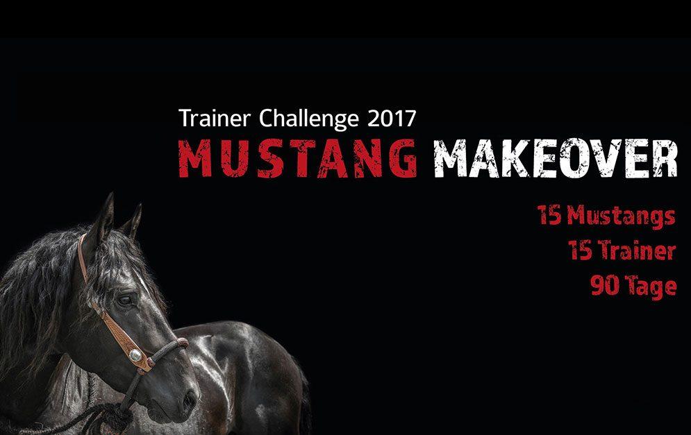 Das Mustang Makeover ist ein Event, bei dem wilde Mustangs aus der freien Wildbahn zu 15 verschiedenen Trainern kommen und bei diesen für ein Leben als Reitpferd vorbereitet werden.