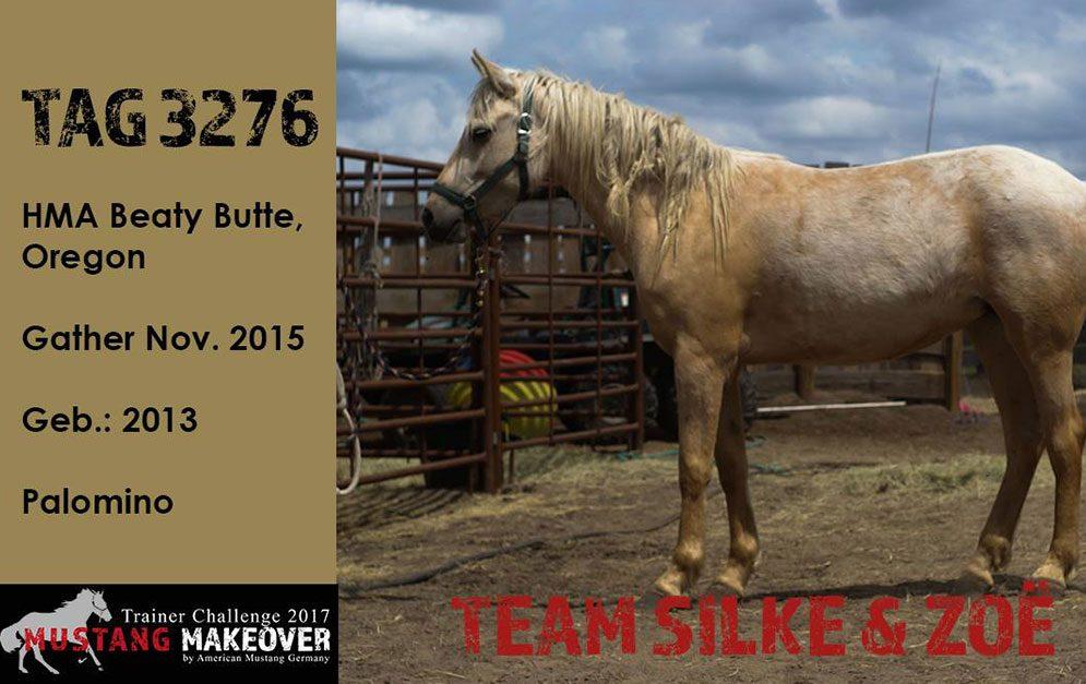 Silke Vallentin wollte das Mustang Makeover unterstützen, das zur Bekanntmachung und zum Schutz der Mustangs beiträgt.