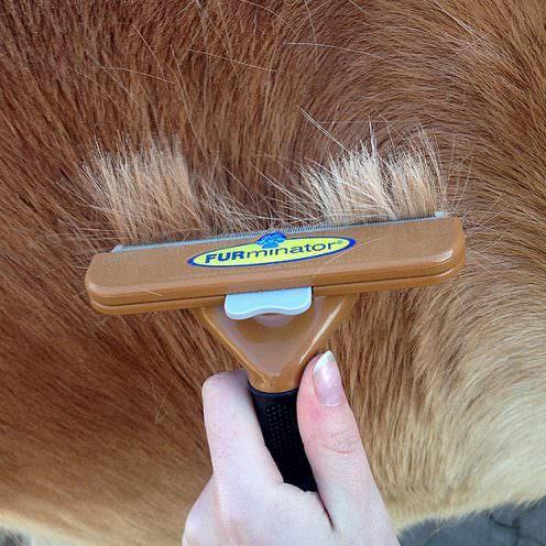 Der FURminator ist ein Putzwerkzeug, das die Fellpflege vor allem im Fellwechsel erleichtern soll. Hält er, was er verspricht?