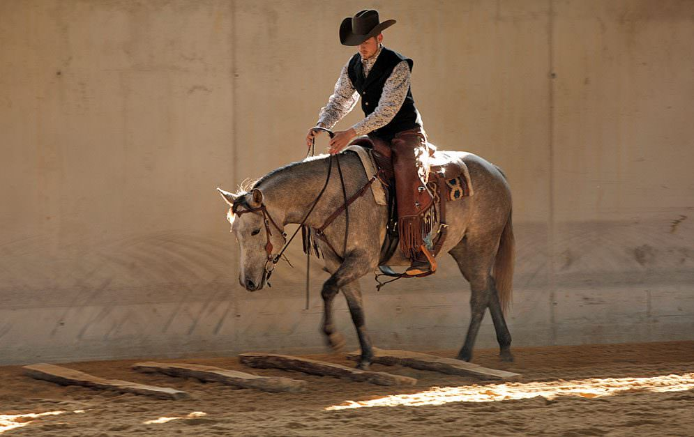 Disziplin im Westernsport: Ranch Riding.