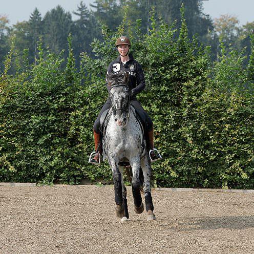 Jedes Pferd ist von Natur aus nicht ganz symmetrisch. Ein Zustand, der sich auch beim Reiten durch eine gute und eine schlechte Seite äußert. Dies sollte im Laufe der Ausbildung so gut wie möglich ausgeglichen werden, sodass das Pferd in der Lage ist, jede Übung auf beiden Händen in beinahe der gleichen Qualität zu zeigen.