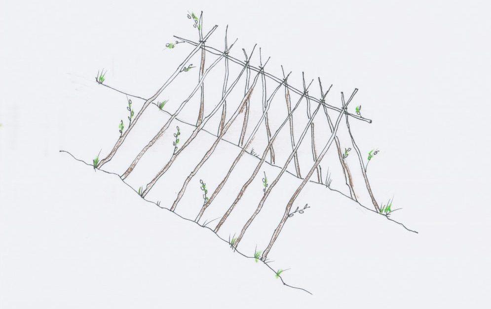 Ein sogenanntes Schutzdach aus Weidensteckhölzern ist eine naturnahe Alternative zu Weidehütten – und eignet sich daher besonders gut für den Paddock Trail.