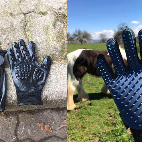 Wie wirkungsvoll sind Putzhandschuhe und welche sind am besten? Wir und unsere Pferde haben die Handschuhe ausprobiert - und geputzt was das Zeug hält.
