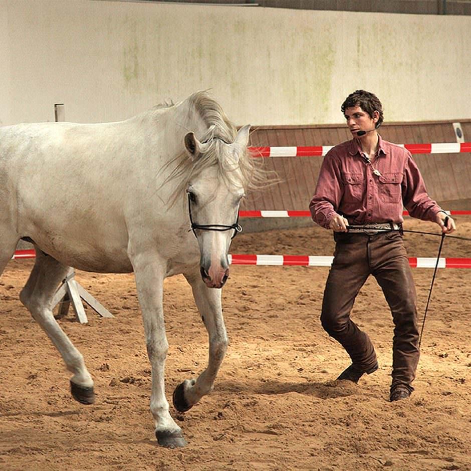 Arien Aguilar ist ein Horseman aus den USA.