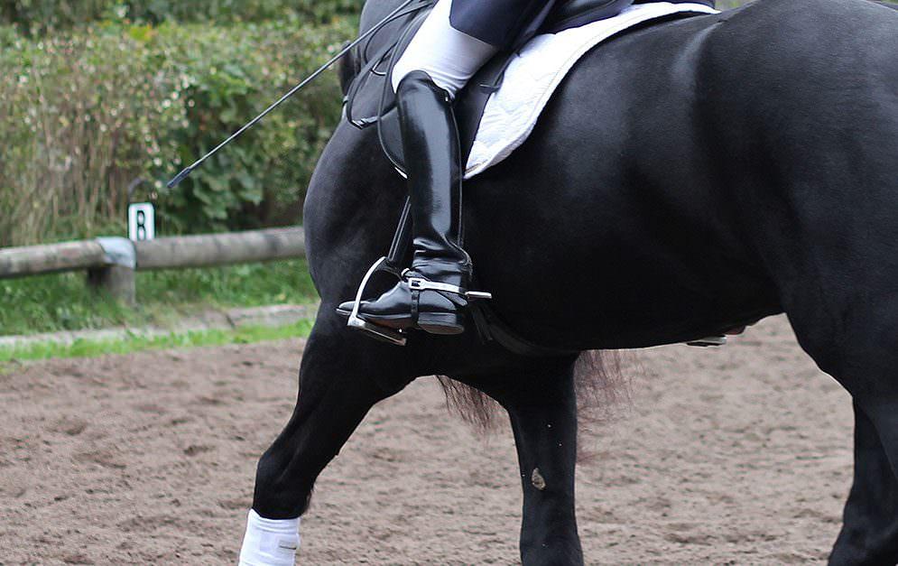 In diesem Artikel erklären Profis aus der Pferdeszene, z.B. Helen Langehanenberg, wie sie zum Einsatz der Sporen stehen und darüber denken.