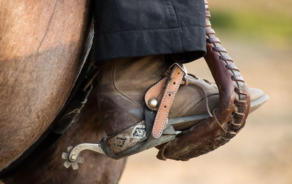 Man sieht sie überall, die Sporen. Seien es Western-, Spring- oder Dressurturniere, Lehrgänge oder jegliche Vorführungen auf Pferdemessen - der Sporn ist überall zu finden.