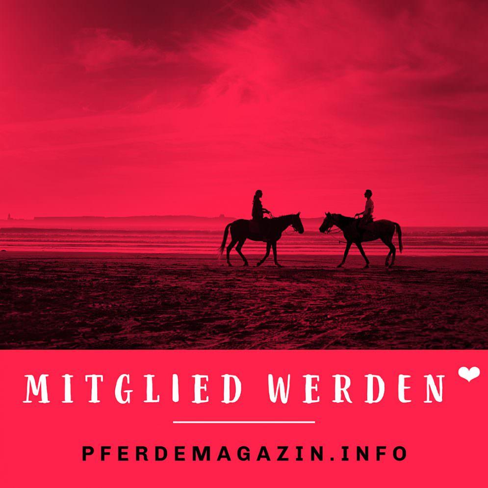Pferdemagazin_Mitgliedwerden