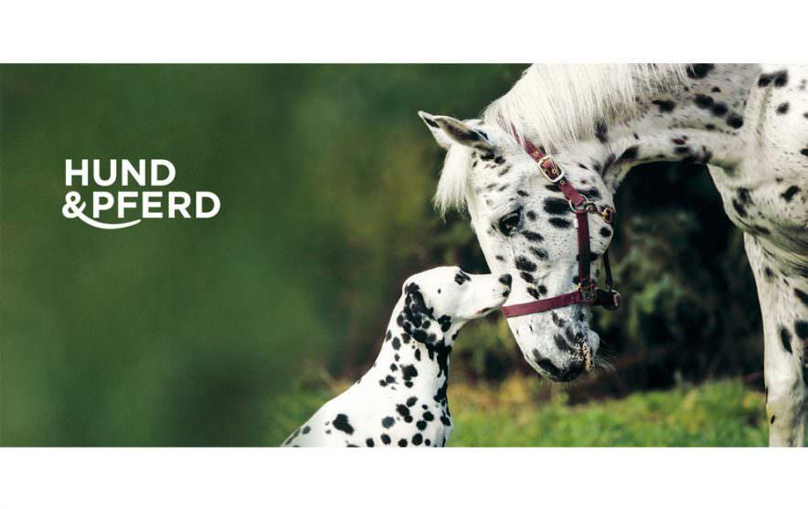 Pferd und Hund Logo