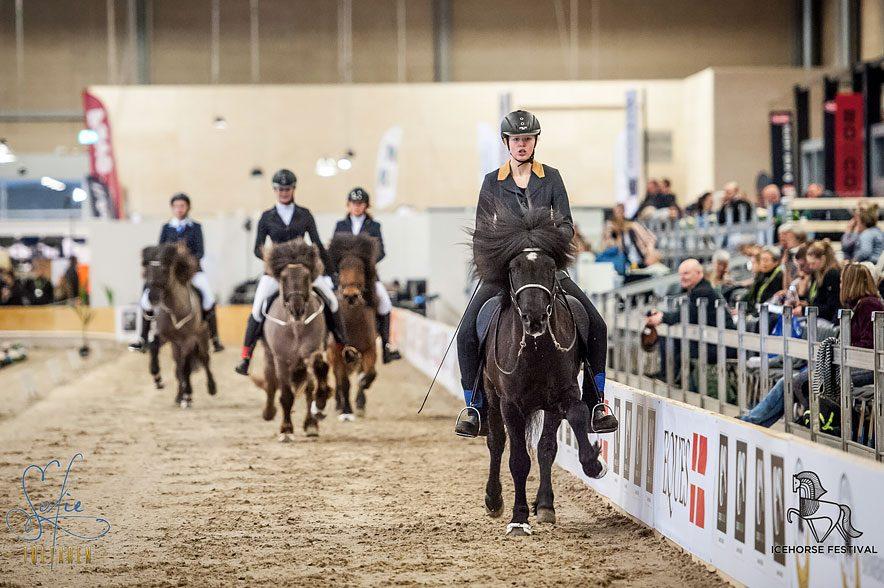 Durch die verschiedenen Wettbewerbe, gibt es eine abwechslungsreiche Präsentation der besten europäischen Sportreiter. © Sofie Lahtinen Carlsson