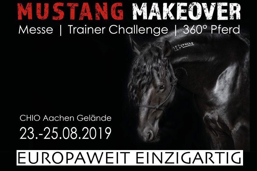 Das Mustang Makeover 2019