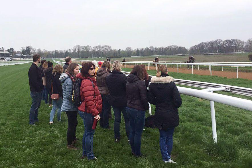 Tag der Rennställe: Mehr als 1000 Besucher erhielten einen exklusiven Einblick in die Welt der edlen Rennpferde. © German Racing