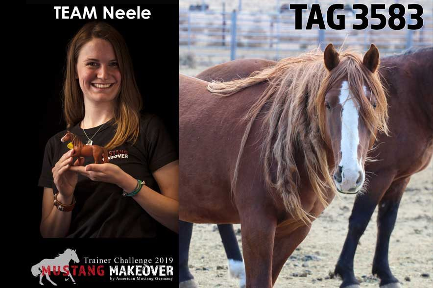 Mustang Makeover Auslosung: Team Neele