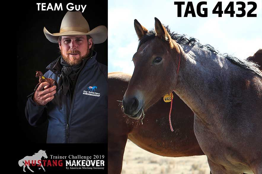 Mustang Makeover Auslosung: Team Guy