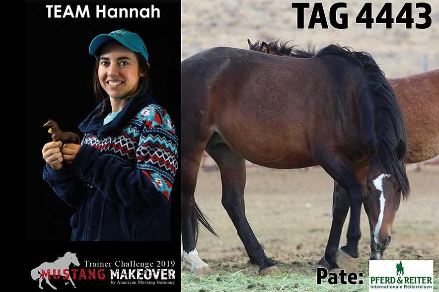 Mustang Makeover Auslosung: Team Hannah