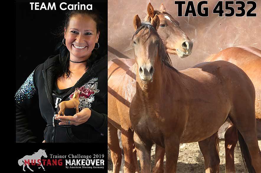 Mustang Makeover Auslosung: Team Carina