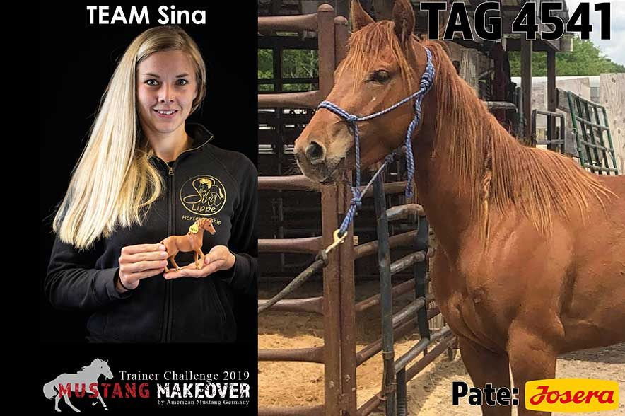 Mustang Makeover Auslosung: Team Sina