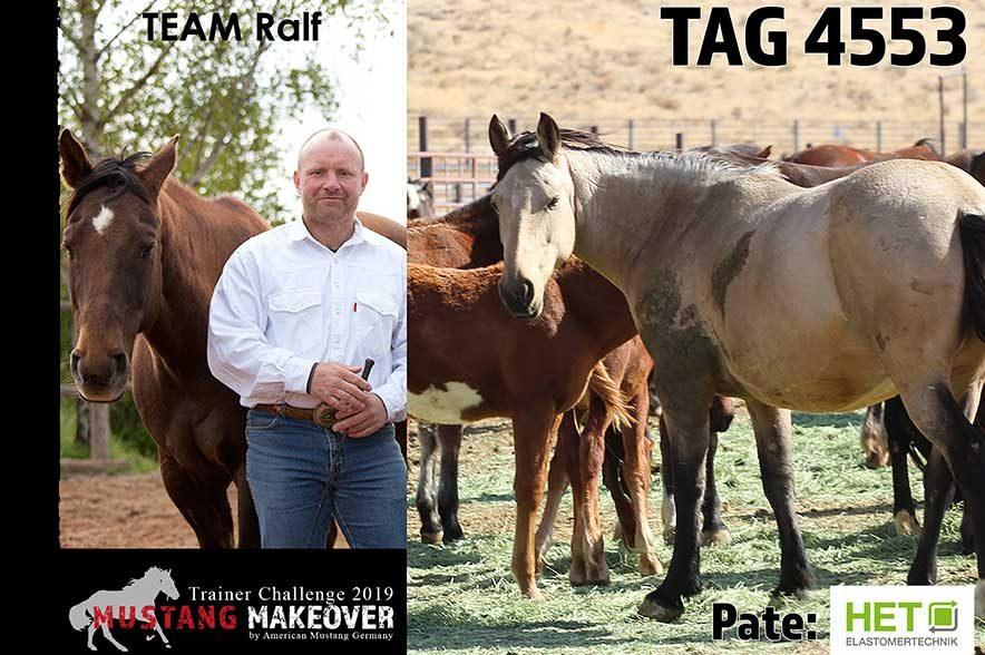 Mustang Makeover Auslosung: Team Ralf