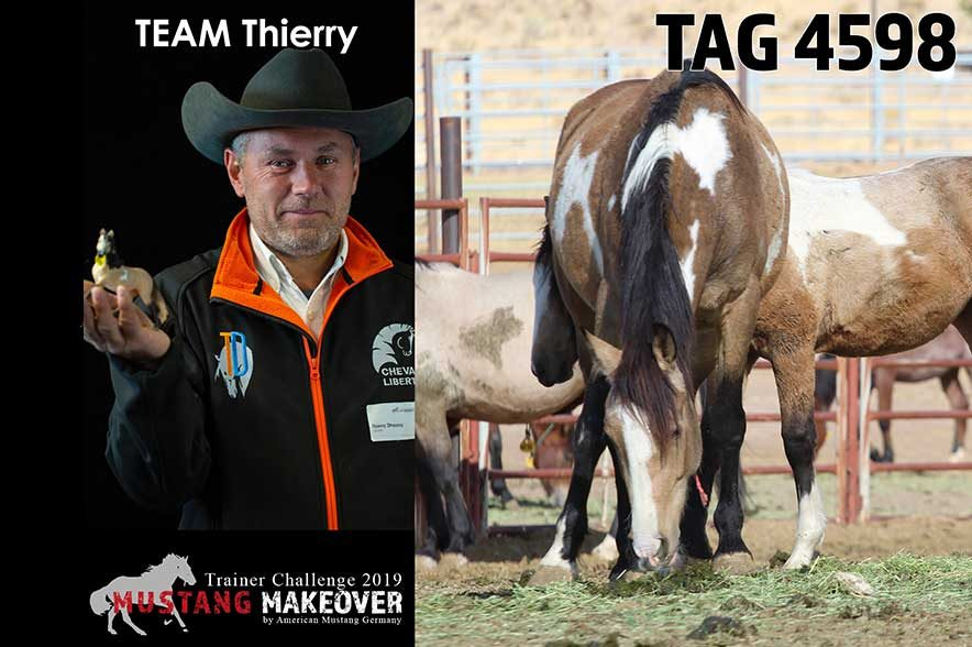 Mustang Makeover Auslosung: Team Thierry