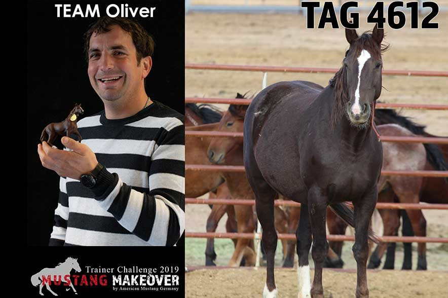 Mustang Makeover Auslosung: Team Oliver