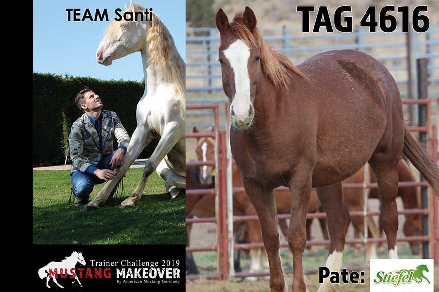 Mustang Makeover Auslosung: Team Santi
