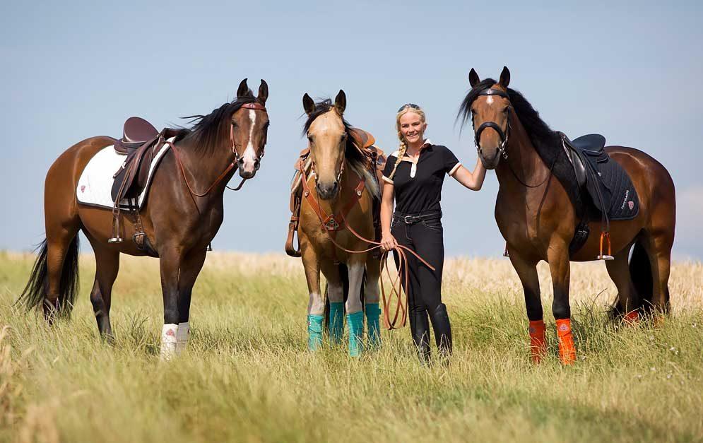 Die DREI - Der Film. 3 Pferde – 100 Tage – 1.000 Herausforderungen! Dem hat sich Yvonne Gutsche gestellt – herausgekommen ist ein packender und ehrlicher Dokumentarfilm.