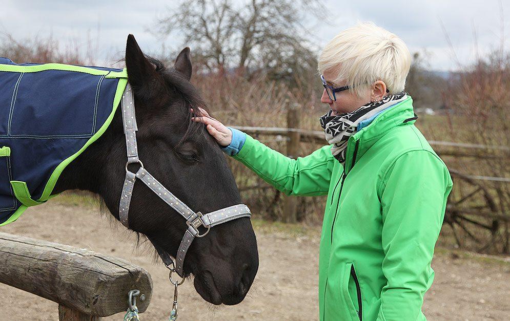 Jeden Monat kannst du bei uns einen Profi fragen - egal ob es um grundsätzliche Probleme mit deinem Pferd geht oder um Allgemeines.
